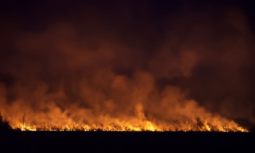 Protect yourself against the effects from bushfire smoke